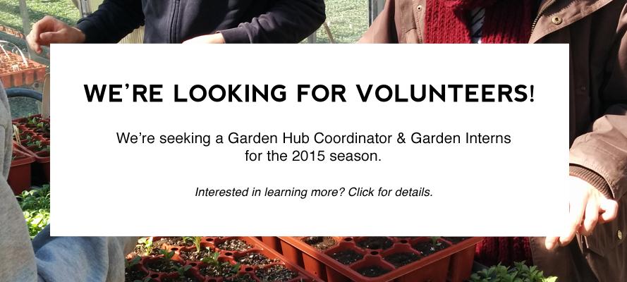 Current Volunteer Openings