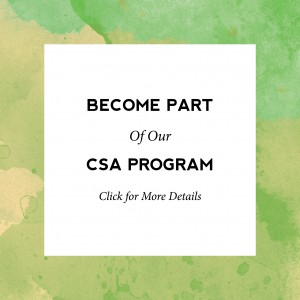 Become Part of Our CSA